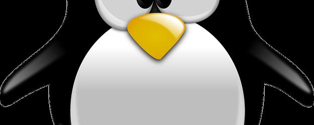 Evalúa la vulnerabilidad de tu sitio web frente a Penguin 2014
